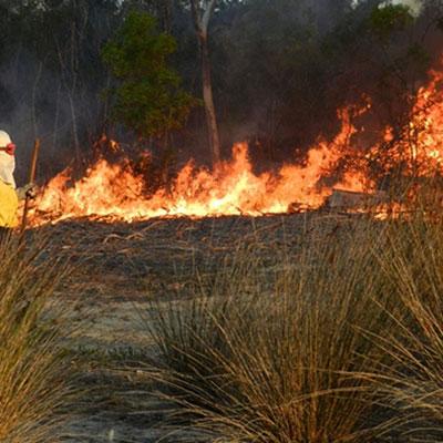 The Overberg's busy fire season