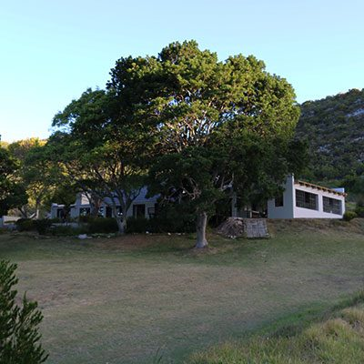 The launch of the Grootbos Environmental Centre